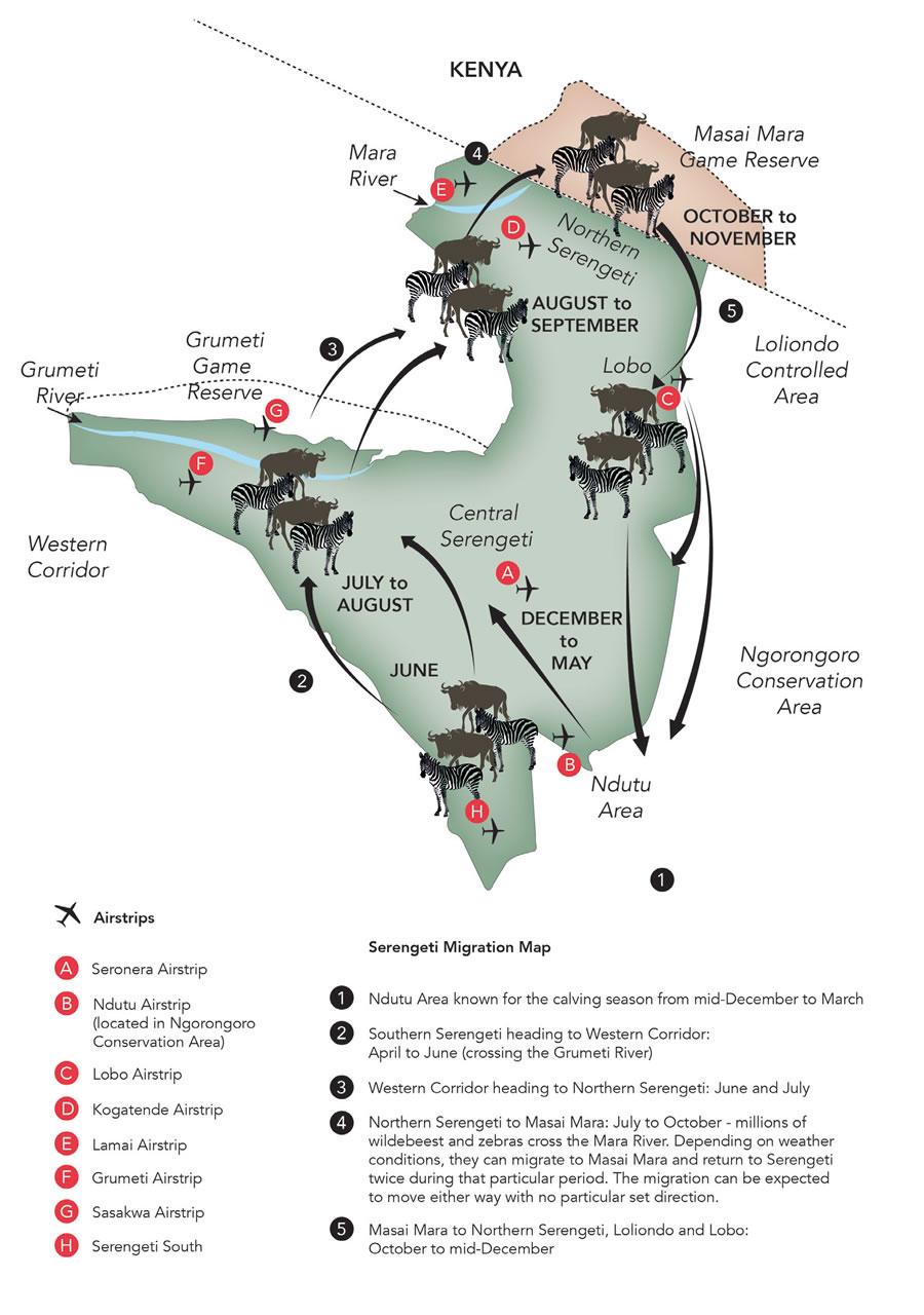 serengeti-migration-map