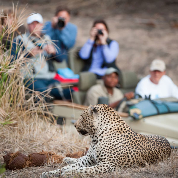 tanzani-safari-faqs-tips-fig