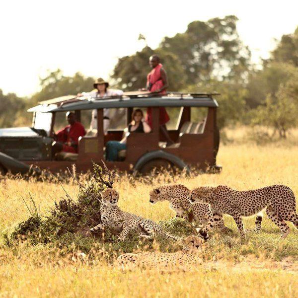 tipping-in-tanzania-safari-tips-fig
