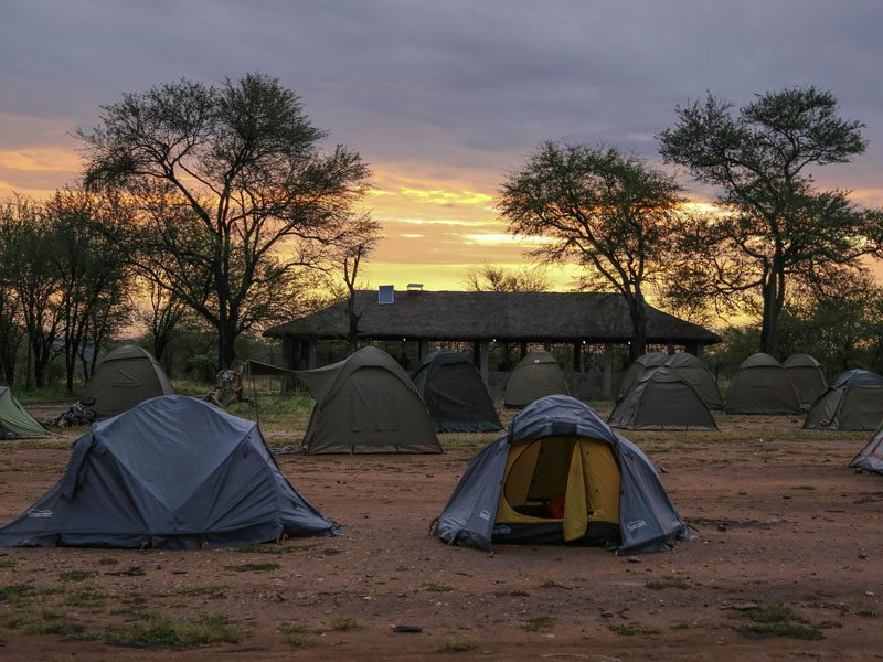 tanzania-camping-safari-gal-1